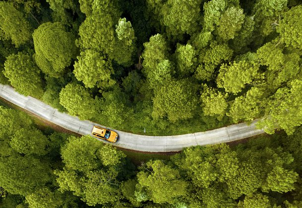 Green Driving-2